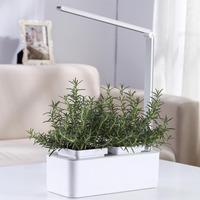 Компактный смарт-сад iGarden LED