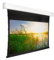 Экран с электроприводом Premier Phoenix-R (16:9) 213х213 (E 203x115/9 (MW)-PR/W)