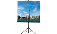 Экран на штативе Lumien Eco View LEV-100105 (1:1) 160x160 (160х160, MW)